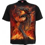 Spiral - Draconis - T-Shirt - Schwarz Bekleidung